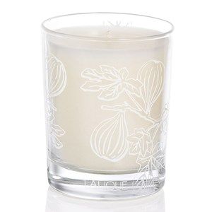 Lalique Fig Tree Scented Candle