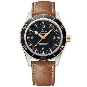 Omega Seamaster 300 Co-Axial Master Chronometer 41mm Steel & Yellow Gold